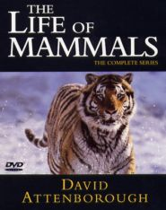 No Image for THE LIFE OF MAMMALS DISC 2