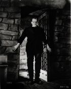 No Image for FRANKENSTEIN (1931)