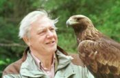 No Image for ATTENBOROUGH IN PARADISE (PART 1)