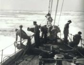 No Image for ENDURANCE (SHACKLETON)