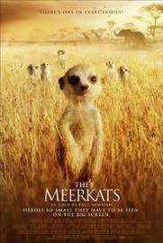 No Image for MEERKATS: THE MOVIE