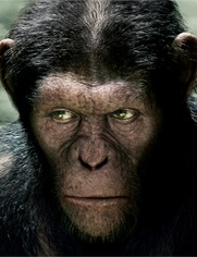 No Image for RISE OF THE PLANET OF THE APES