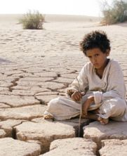 No Image for THEEB