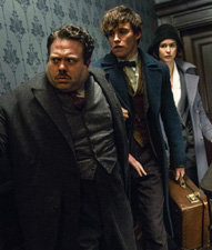 No Image for FANTASTIC BEASTS AND WHERE TO FIND THEM
