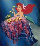 No Image for THE LITTLE MERMAID (DISNEY)
