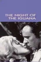No Image for THE NIGHT OF THE IGUANA