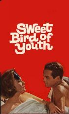 No Image for SWEET BIRD OF YOUTH