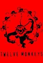 No Image for TWELVE MONKEYS